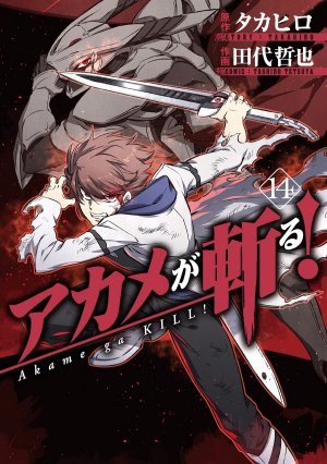 Red Eyes Sword - Akame ga Kill ! # 14