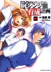 Evangelion - Plan de Complémentarité Shinji Ikari édition simple