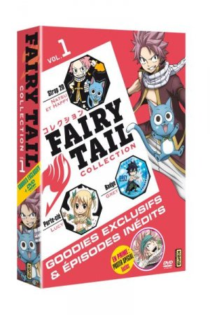 Fairy Tail Collection édition Simple