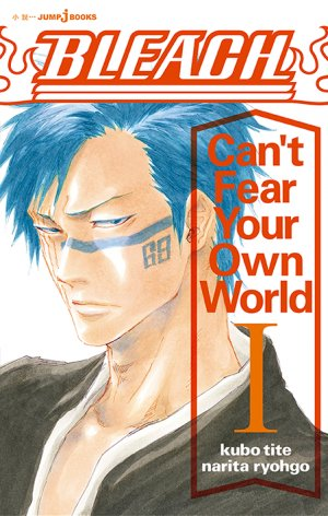 Bleach - Letter from the other side 1 Roman