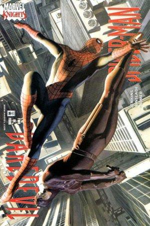 Daredevil / Spider-Man # 2 Issues (2001)