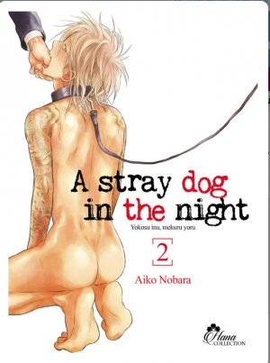 A stray dog in the night