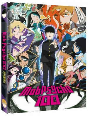 Mob Psycho 100 1 Collector DVD