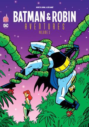 Batman & Robin Aventures 3 TPB softcover (souple)