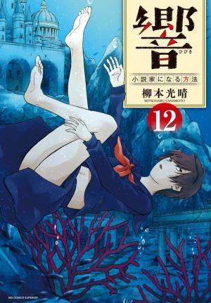 Hibiki - Shousetsuka ni Naru Houhou 12