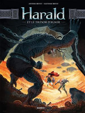 Harald et le Trésor d'Ignir 2 simple