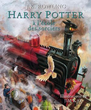 Harry Potter édition simple