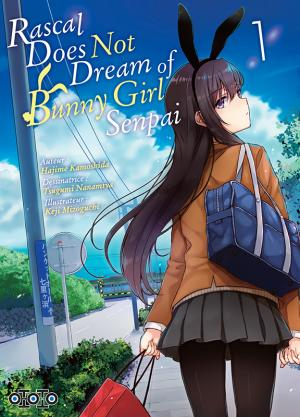 Rascal Does Not Dream of Bunny Girl Senpai 1 simple