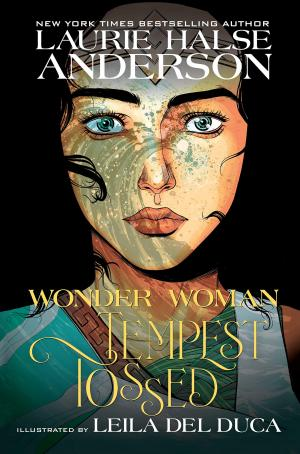Wonder Woman: Tempest Tossed édition TPB softcover (souple)