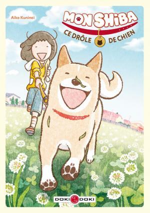 Mon Shiba, ce drôle de chien  simple