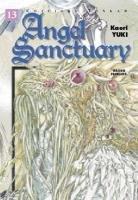 Angel Sanctuary T.13