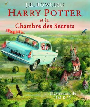 couverture, jaquette Harry Potter 2  - HARRY POTTER ET LA CHAMBRE DES SECRETS (Gallimard jeunesse)