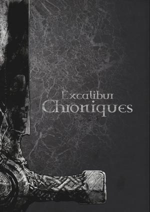 Excalibur - Chroniques édition Intégrale N&B Luxe