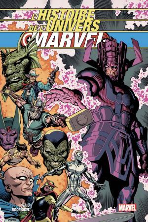 L'histoire de l'univers Marvel  TPB hardcover (cartonnée)