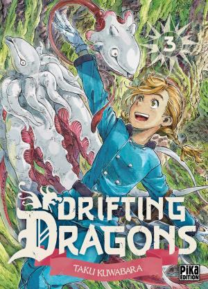 Drifting dragons 3 simple