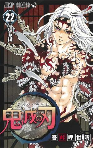 couverture, jaquette Demon slayer 22  (Shueisha) Manga