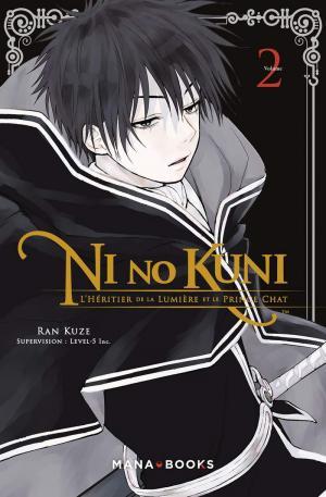 Ni no Kuni - L'héritier de la lumière et le prince chat 2 simple