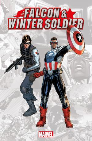 Falcon & Winter Soldier  TPB softcover (souple)