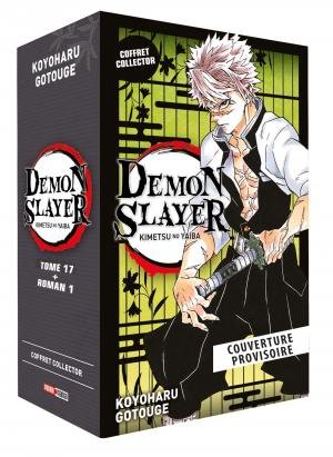 Demon slayer 17 coffret + roman