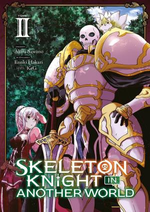 Skeleton Knight in Another World 2 simple