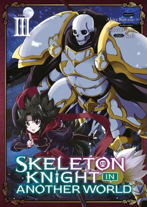 Skeleton Knight in Another World 3 simple