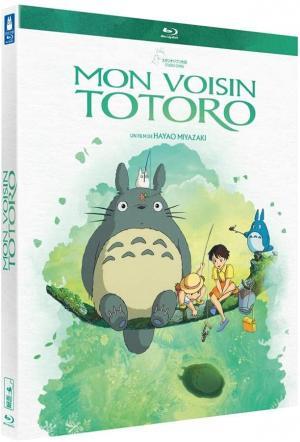 Mon Voisin Totoro  simple