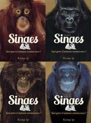 Singes  simple
