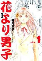 Hana Yori Dango édition Edition Deluxe