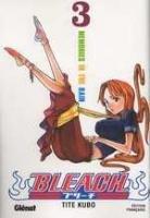 Bleach T.3