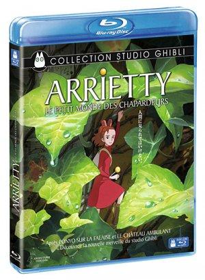 Arrietty Le Petit Monde des Chapardeurs édition Blu-Ray Simple
