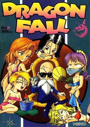 couverture, jaquette Dragon Fall 2  (Hi No Tori Studio)
