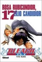 Bleach T.17