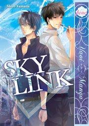 Sky Link édition USA