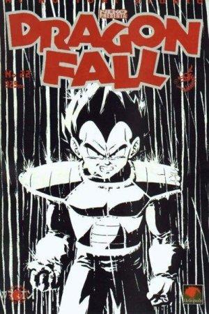 couverture, jaquette Dragon Fall 22  (Hi No Tori Studio)