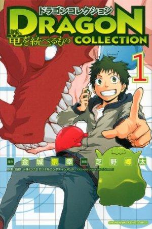 Dragon Collection - Ryû wo Suberumono édition simple