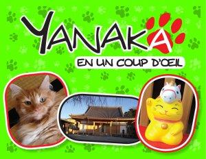 Yanaka en un coup d'oeil édition Simple
