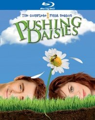 Pushing Daisies édition Simple