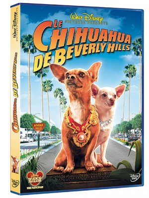 Le chihuahua de beverly hills édition Simple