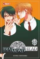 Diamond Head #3