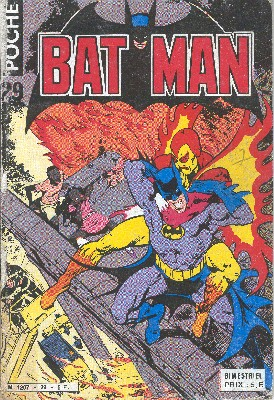 Batman Poche 29 - Ma ville est un brasier que rien ne peut eteindre