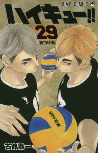Haikyû !! Les as du volley 29
