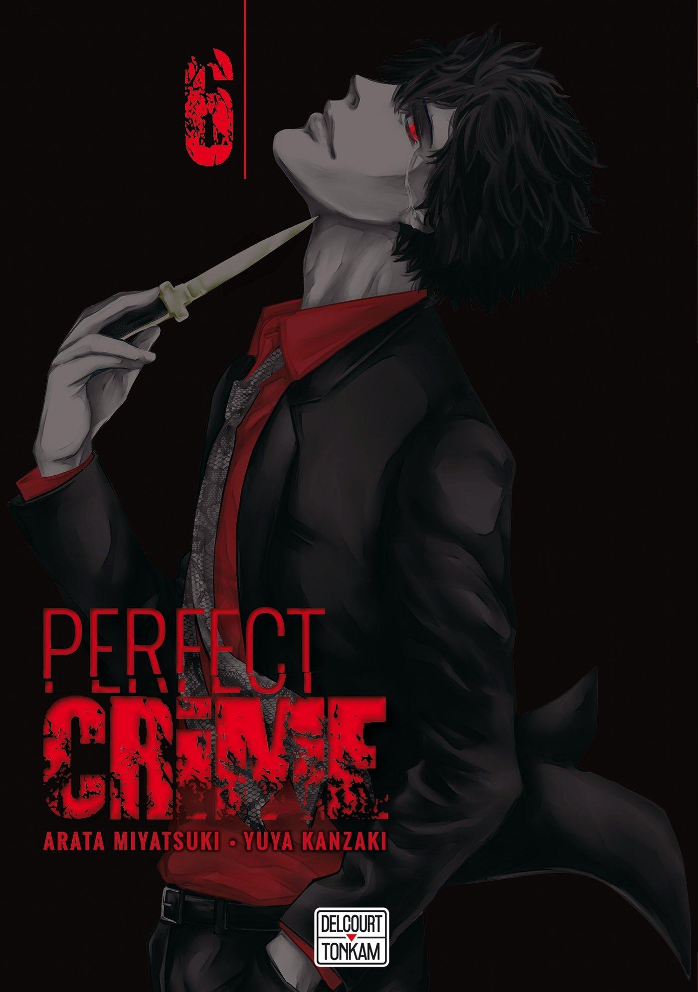 Perfect crime 6