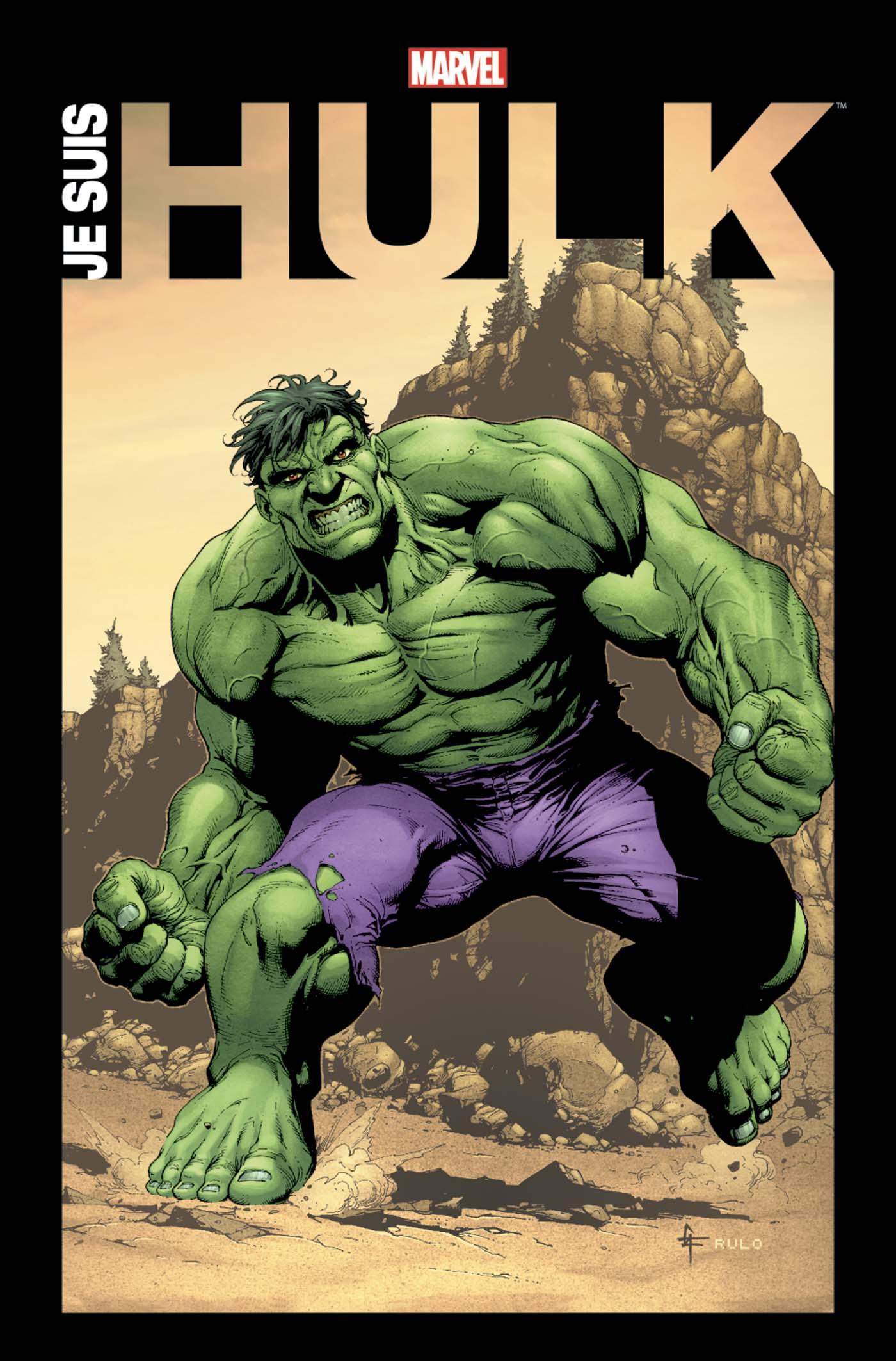 Je suis Hulk 1