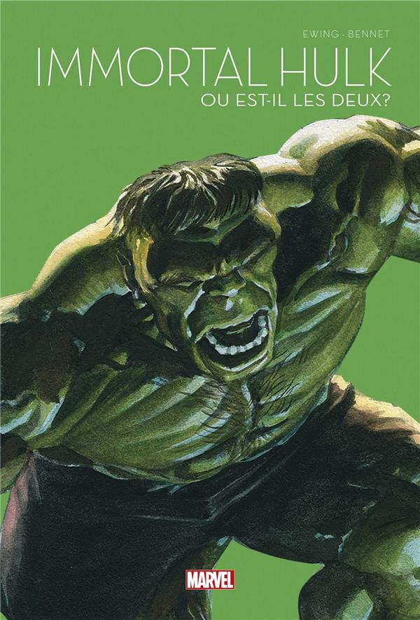 Le printemps des comics 2021 7 - Immortal Hulk - Où est-il les deux ?