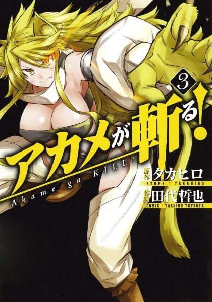 Red Eyes Sword - Akame ga Kill ! 3