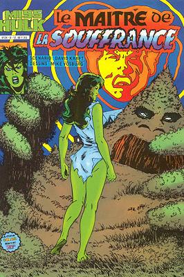Miss Hulk 9 - Le maître de la souffrance