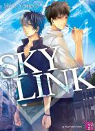 Sky Link 1