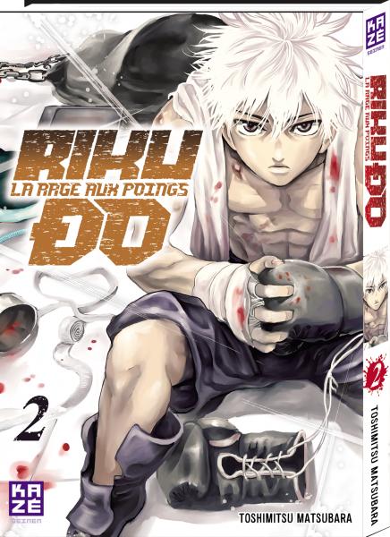 Critique Riku-do 2