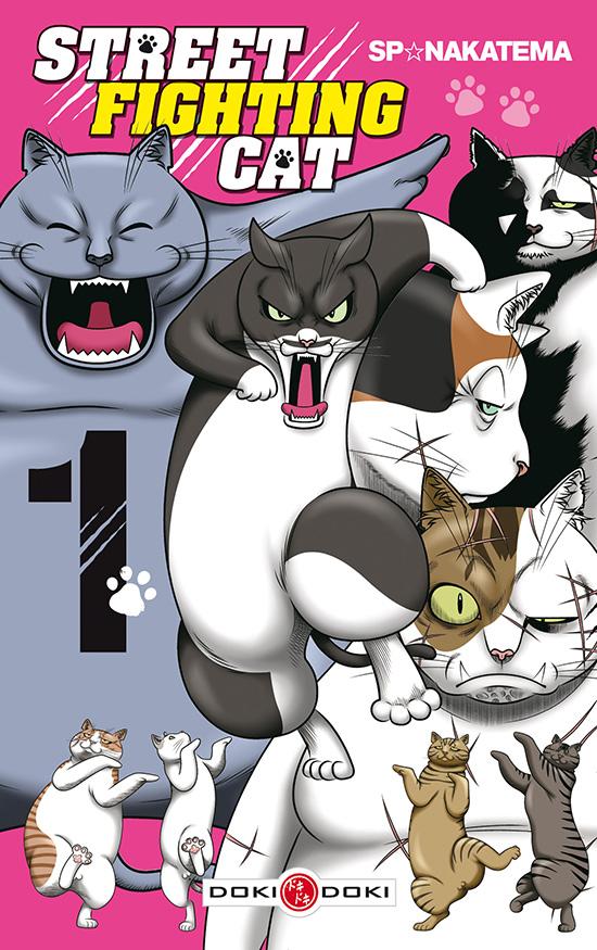 Street fighting cat chez Doki-Doki