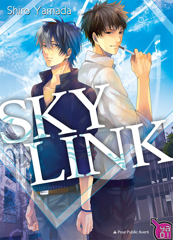 Lecture en ligne : Sky link